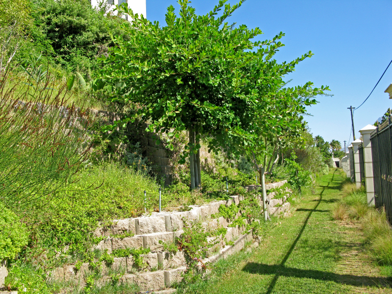 Retaining walls make effective noise barriers - Building & Decor